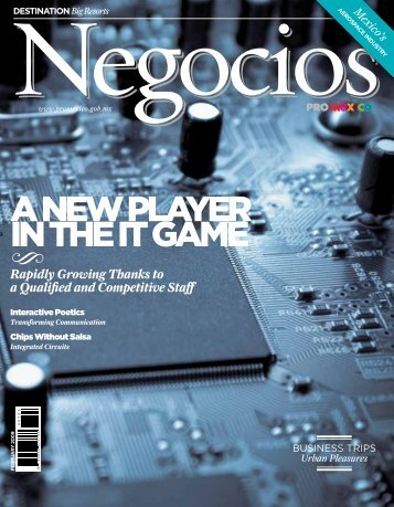 A NEW PLAYER IN THE IT GAME - ProMéxico