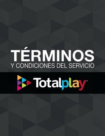 terminos-condiciones-servicio
