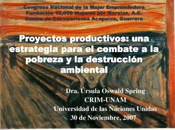 Proyectos productivos: una estrategia para el combate a la pobreza ...