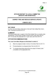 Public Safety Plan, item 13/13 PDF 79 KB - Surrey County Council