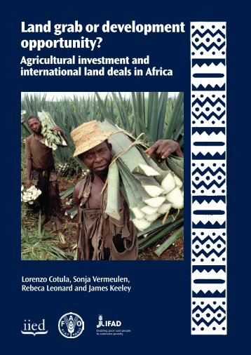 Land Grab or Development Opportunity? Agricultural ... - IFAD