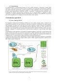 """""""Sperimenta il BioLab"""" - CusMiBio - Università degli Studi di Milano - Page 6"""