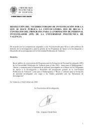 Convocatoria becas FPI UPV 2010 - Universidad Politécnica de ...