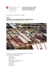 teil b: anwendung des risikokonzepts: prozess hagel - Planat
