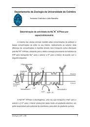 Departamento de Zoologia da Universidade de Coimbra