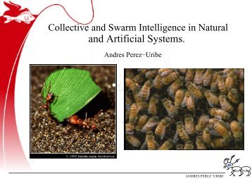 and Artificial Systems. - Andres Perez-Uribe web page