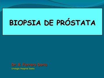 Descargar presentación en formato PDF
