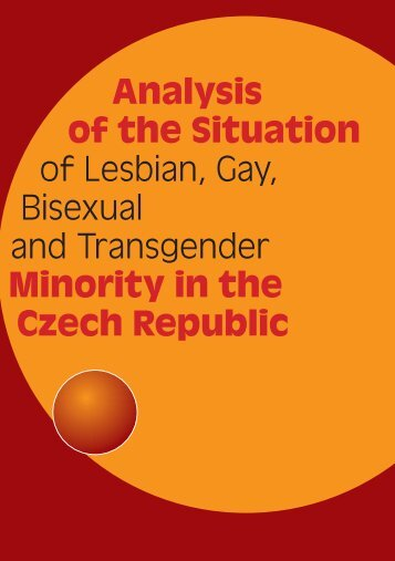 Analysis of the Situation of Lesbian, Gay, Bisexual and Transgender ...
