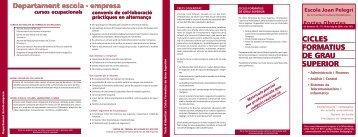 Tríptic Cicles Formatius - Campus Virtual - Escola Joan Pelegrí