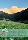 Švýcarsko – léto nejen v Alpách. - Moje Švýcarsko.com - Page 7