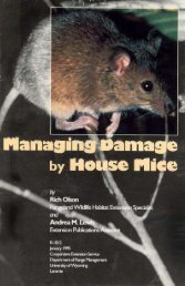Managing Damage by House Mice