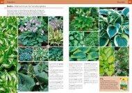 PDF 5 - Garten Center Säriswil