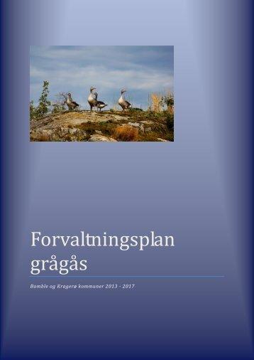 Forvaltningsplan grågås - Bamble kommune