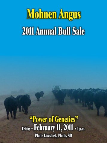2011 Annual Bull Sale - Angus Journal