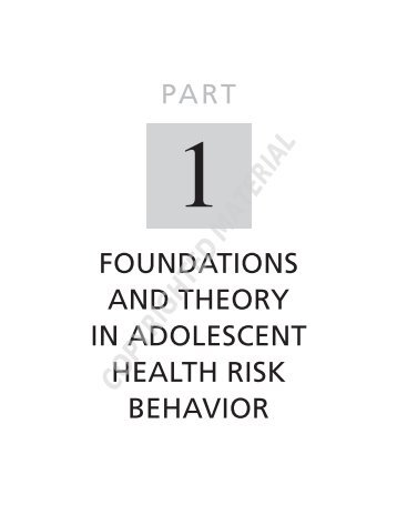 foundations and theory in adolescent health risk behavior