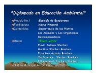 Diplomado en Educación Ambiental
