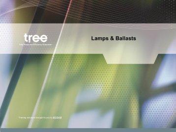 Lamps & Ballasts - Questline