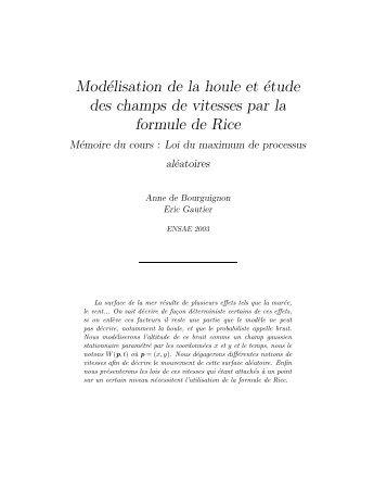 Modélisation de la houle et étude des champs de vitesses par la ...