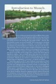 Freshwater Mussels Pacific Northwest - South Coast Conservation ... - Page 3