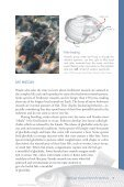 Freshwater Mussels Pacific Northwest - South Coast Conservation ... - Page 5