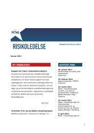 Januar 2011 Rapport om intern risikokommunikation ... - primo
