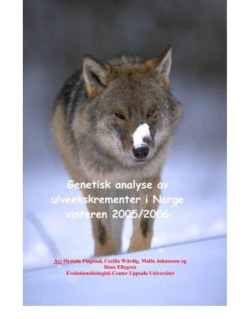 Genetisk analyse av ulveekskrementer i Norge vinteren 2005/2006