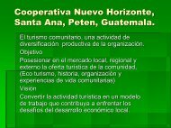 Cooperativa Nuevo Horizonte, Santa Ana Peten Guatemala.