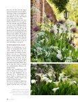 Sommerblüte aus der Zwiebel (Lilie, Dahlie & Co.) - textaturen ((.)) de - Seite 5