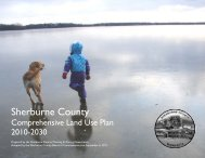 Comprehensive Land Use Plan - Sherburne County Minnesota