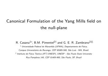 Canonical Formulation of the Yang Mills field on the null-plane