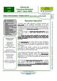 ÁREA INFUSIONES: YERBA MATE Resumen Ejecutivo Informe de ...