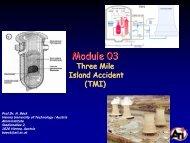 TMI -accident - Atominstitut