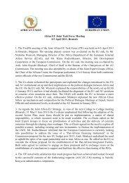 Joint Task Force report - Africa-EU Partnership