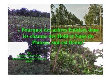 Pourquoi des arbres fruitiers dans les champs des Holli et Nago du ...