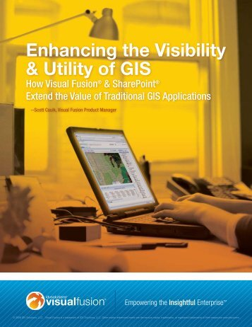 Enhancing the Visibility & Utility of GIS - IDV Solutions