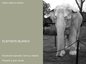 Patxi. Elefante blanco