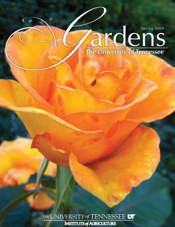 Spring/Summer 2009 - UT Gardens - The University of Tennessee