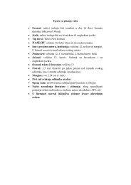 upute za pisanje radova