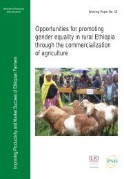 Opportunities for promoting gender equality in rural Ethiopia through ...