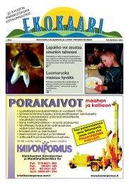 Ekokaari 1/2004 - Riihimäki