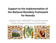 S tt th i l t ti f Support to the implementation of the National ... - REMA