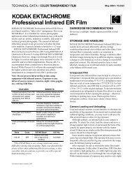 KODAK EKTACHROME Professional Infrared EIR Film - blende7