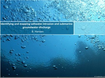 Identifying and mapping saltwater intrusion and submarine ...