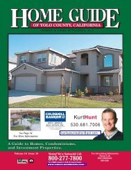 KurtHunt - Home Guide of Yolo County, CA
