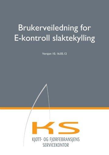 Brukerveiledning E-kontrollen 10.pdf