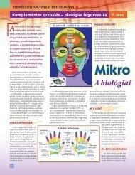 láb - kéz reflexológia - Mikrorendszerek 1. - BioDent