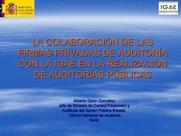 auditores privados