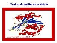 Técnicas de análise de proteínas - Biologia Molecular e Genética