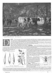 D1 - Réseau semences paysannes