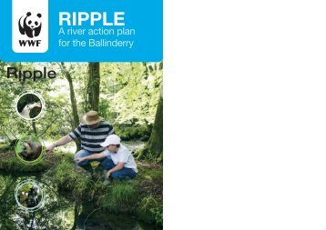 A river action plan for the Ballinderry - WWF UK